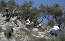 Israeli settlers attack against Palestinian farmers in northern West Bank