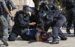 Israeli occupation forces assault Palestinian youths in Bab al-Amud