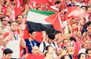الجمهور التونسي يرفع علم فلسطين والكوفية خلال مباراة منتخبهم مع انجلترا