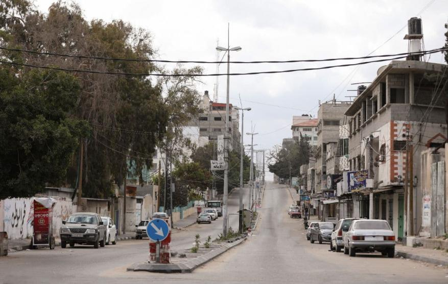 قطا غزة  (7)