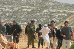 Colonialist Settlers Assault Palestinian Youth in Hebron