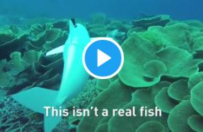 سمكة روبوتية للتجسس