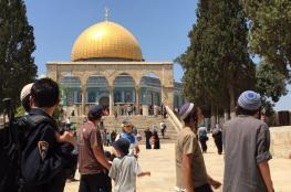 More than 100 settlers break into al-Aqsa today
