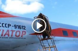 دب يساعد العاملين في مطار عسكري روسي !