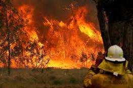 مصرع 3 أشخاص جراء حرائق في أستراليا