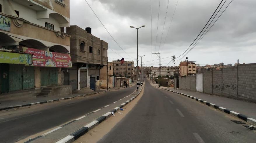 قطا غزة  (14)