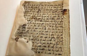 مكتبة هولندية تحتوي على مخطوطات عربية نادرة