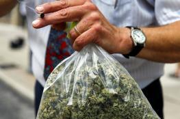 السماح بإعطاء الماريجوانا لطلاب المدارس في كولورادو