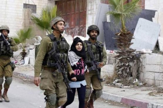 الاحتلال يعتقل فتاة قرب المسجد الإبراهيمي بالخليل