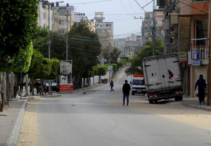 قطا غزة  (1)