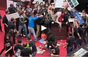 تراشق بأحشاء الخنازير داخل البرلمان التايواني (فيديو) -