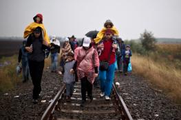 الأمم المتحدة: ارتفاع عدد المهاجرين في العالم إلى 244 مليون