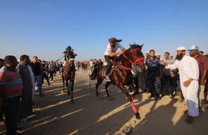 سباق الخيل في مدينة رفح جنوب قطاع غزة