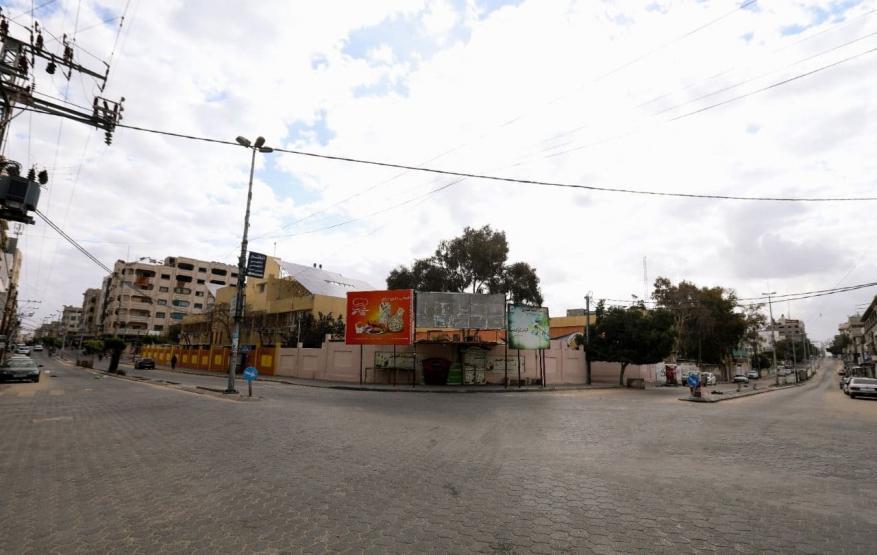 قطا غزة  (8)