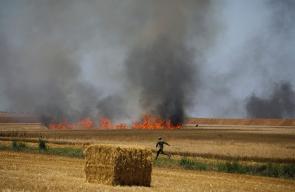 اشتعال حرائق كبيرة في الحقول بالداخل المحتل بفعل الطائرات الورقية الحارقة