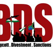 bds-SA-logo