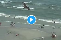 جارح يصطاد سمكة قرش ويحلق بها فوق الشاطئ