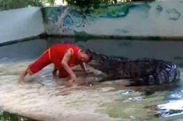 نهاية غير متوقعة لاستعراض مع تمساح