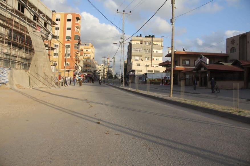 قطا غزة  (19)