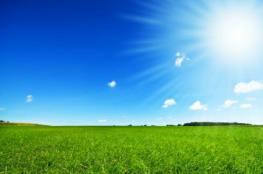 أجواء صافية ولا تغير على الحرارة