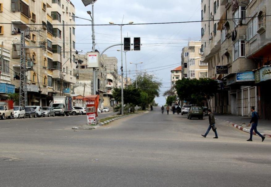 قطا غزة  (17)