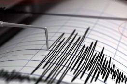 زلزال بقوة 4.8 درجة يضرب تركيا