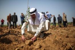 مسيرة العودة: ابداع المقاومة الفلسطينية
