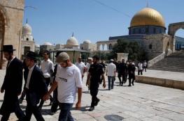 87 مستوطنا يقتحمون المسجد الأقصى