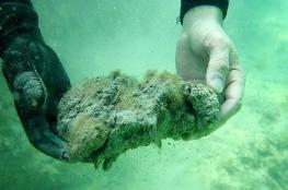مفاجأة خطيرة.. المحيط أصدر كمية هائلة من ثاني أوكسيد الكربون دون أن يلاحظ أحد