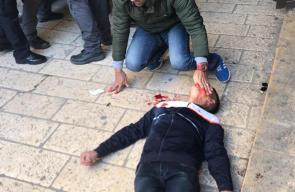 إصابة مقدسي باعتداء وحشي للمستوطنين على أبواب المسجد الأقصى