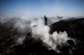 إنتاج الفحم في قطاع غزة