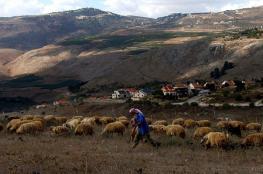"""الاحتلال يعتقل راعي ماشية لبنانيا بزعم """"اجتيازه الحدود عمدا"""""""