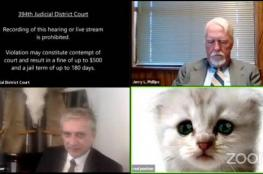 «أنا لست قطة»... محام يتعرض لموقف محرج خلال محاكمة افتراضية