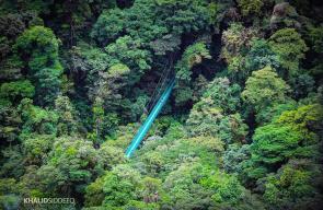 صور للغابة السحابية في كوستاريكا، تستطيع  رؤية كل من البحر الكاريبي والمحيط الهادي منها