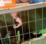 1_Toddler-is-found-in-a-cage