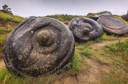 أحجار تنمو وتتحرك وتتكاثر في ظاهرة أدهشت العلماء
