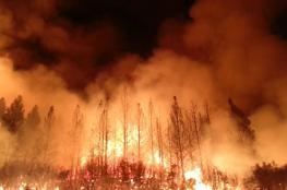 ترامب: ندفع المليارات لتجنب حرائق الغابات دون جدوى!