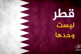 """""""قطر ليست وحدها"""".. صوت فلسطيني متضامن مع قطر في وجه الحملة الإماراتية"""