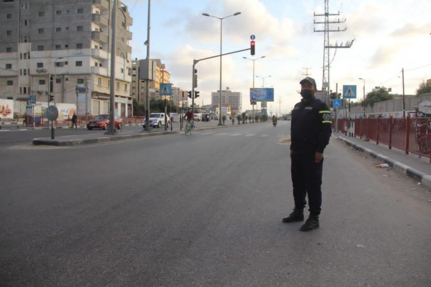 قطا غزة  (3)