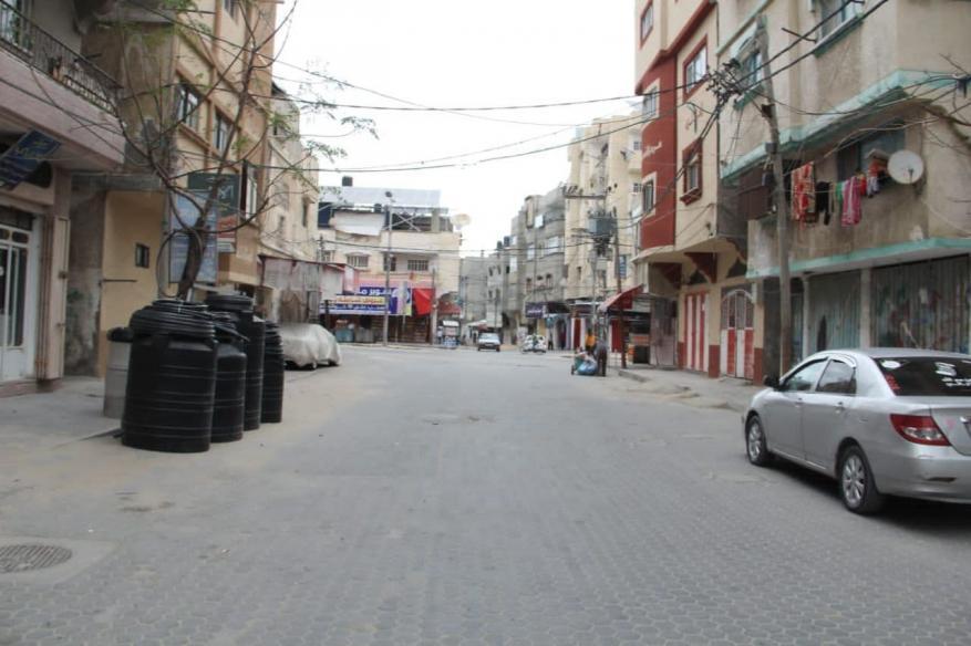 قطا غزة  (10)