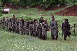 """الجيش التركي يعلن مقتل قيادي بـ """"العمال الكردستاني"""""""