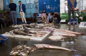 الأسماك في سوق الحسبة على شاطئ بحر غزة