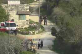 Watch how the Israeli soldiers attack Palestinian couple with baby