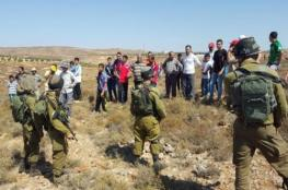 أهالي نابلس يصدون هجوما للمستوطنين على قاطفي الزيتون
