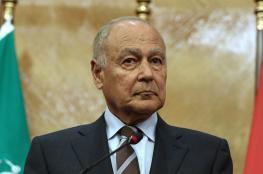 خلال لقائه وزير الدفاع اللبناني.. أبو الغيط يؤكد رفضه لأية محاولة إسرائيلية للتعدي على لبنان