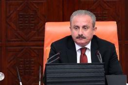 رئيس البرلمان التركي: لا سلام بدون حل عادل للقضية الفلسطينية