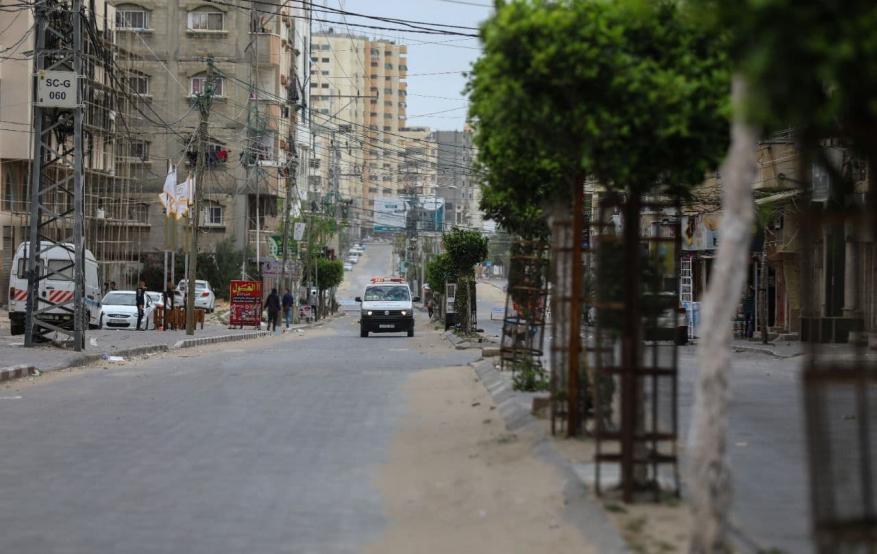 قطا غزة  (6)