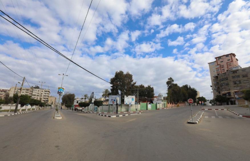 قطا غزة  (5)