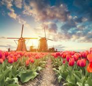 Traditional-Netherlands-Holland