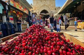 مشاهد من البلدة القديمة في مدينة القدس المحتلة باب العمود وخان الزيت والعطارين
